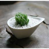 ⓒ白色水滴型陶瓷花盆 白色簡約盆栽【BI10005】