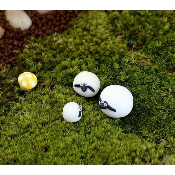 ⓒ48H內出貨🔥迷你小白羊微景觀 可愛綿羊 多肉植物創意微景觀【A022006】