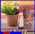 [拉拉百貨] 自動澆水器 自動澆花器 自動點滴式 滴灌器 自動給水器自動灑水器 滲水器