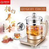 揚子養生壺全自動加厚玻璃燒水壺花茶壺多功能電煮茶器健康養身壺