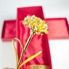 《黃金康乃馨》,送給母親最佳獻禮