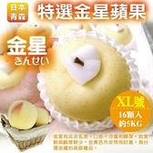 【果之蔬-全省免運】日本青森XL號金星蘋果(14-16顆/約5kg±10%含箱重)