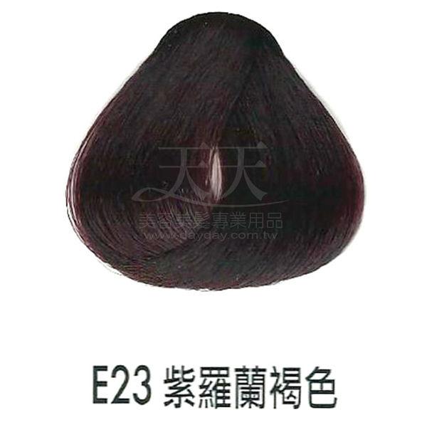 【專業推薦】耐婷 亮彩染髮劑 E23-紫羅蘭褐色 60g [66482]