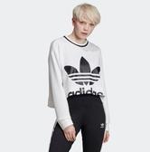 X-adidas Cropped Sweatshirt 白 黑 女款 大學T 短版 運動休閒 長袖T恤  ED4759