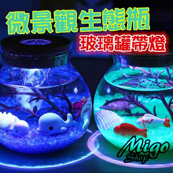 【微景觀生態瓶 玻璃罐 帶燈】玻璃罐帶燈微景觀生態瓶圓形密封罐軟木塞儲物罐