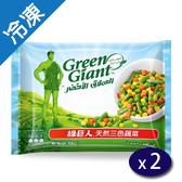 綠巨人天然三色蔬菜450G/包X2【愛買冷凍】