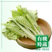 【有機認證生鮮時蔬】荷葉白菜 ( 250g /包)