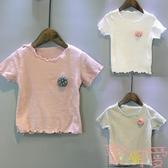 兒童短袖T恤女童夏季韓版打底短袖t恤百搭【聚可愛】