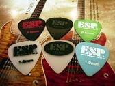 ☆ 唐尼樂器︵☆超酷 ESP 電吉他/電貝斯/ Bass 用 SELECTED PICKS 彈片 PICK(防滑設計款)
