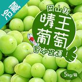 日本晴王綠葡萄5kg/箱( 約7~8串含箱重)【愛買冷藏】