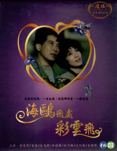 海鷗飛處彩雲飛 DVD 瓊瑤 (購潮8)