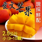 【南紡購物中心】屏東枋山外銷級愛文芒果2.5公斤(小9-10顆/盒)