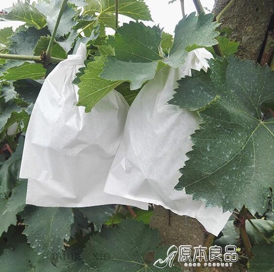 防蟲果網 葡萄袋子防蟲袋露天葡萄套袋果袋防水套葡萄用紙袋育果袋【快速出貨】