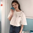 (T-712) - 寬鬆羽毛刺繡短袖T恤