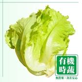 【有機認證生鮮時蔬】福山萵苣 ( 250g /包)