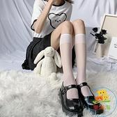 2/3雙 透明小腿襪襪子女薄款中筒襪長筒襪半筒絲襪 樂淘淘