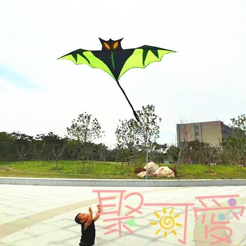蝙蝠風箏兒童成人微風易飛大型線盤輪立體初學者【聚可愛】