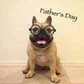 寵物眼鏡 寵物眼鏡搞笑道具小眼鏡巴哥法斗配飾狗狗眼鏡博士底眼鏡搞怪眼鏡 雙12