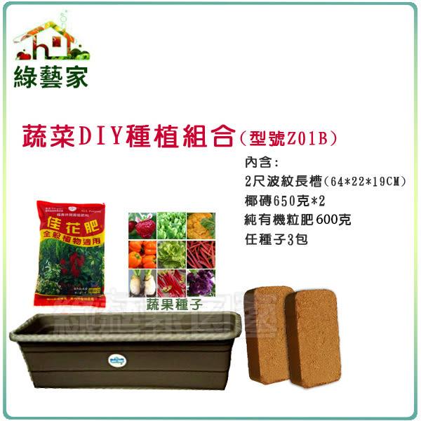 【綠藝家】蔬菜DIY種植組合-中型(型號Z01B)