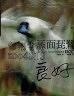 二手書R2YB《黑面琵鷺 全紀錄》吳佩香 經典雜誌9789868262355