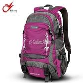旅遊雙肩包2010年新款旅行包女大容量旅行背包防水戶外登山包男 YYP 母親節特惠