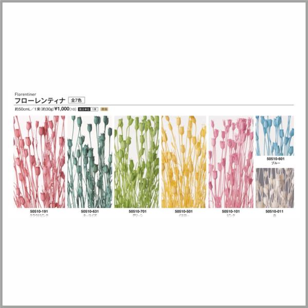 日本進口大地農園 50510 小風鈴花 不凋花材-乾燥花圈 花束 節日花束 手作素材 室內擺飾1朵/10元