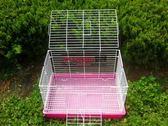 兔籠子 荷蘭豬籠子龍貓籠 噴漆 加粗藍盆igo 晴天時尚館