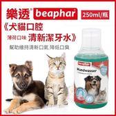 *KINGWANG*荷蘭beaphar 樂透《犬貓口腔清新潔牙水》250ml/瓶 薄荷口味 幫助維持清新口氣 降低口臭
