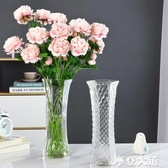 現代簡約玻璃花瓶透明大號富貴竹百合水培鮮花插花裝飾擺件六角瓶『摩登大道』