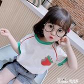 番茄象兒童上衣洋氣女寶寶夏裝純棉t恤女童半袖黑色圓領小童短袖 Korea時尚記