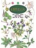 (二手書)台灣野花365天-春夏篇