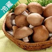 埔里特級鮮香菇1包(300g±5%/包)【愛買冷藏】