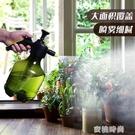 澆花噴壺噴霧瓶園藝家用灑水壺氣壓式噴霧器壓力澆水壺消毒噴水壺 『蜜桃時尚』