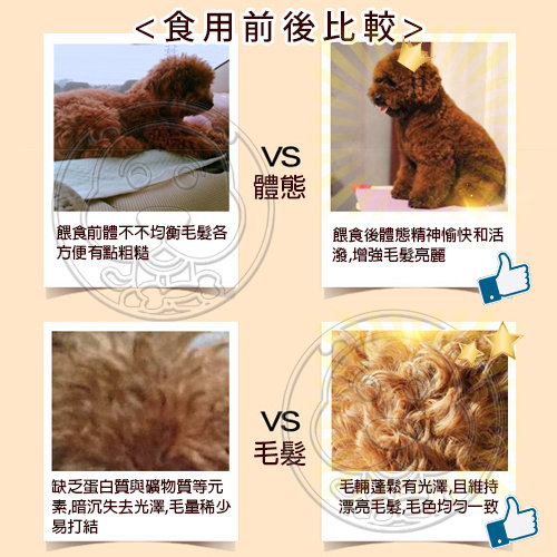 【培菓平價寵物網】《快樂狗》羊肉高嗜口皮膚毛髮挑嘴狗飼料-15kg (原價899 推廣期間649免運)