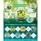 盒裝6款【日本正版】寶可夢 寶貝球 盆景品 P9 盒玩 擺飾 精靈球 水晶球 神奇寶貝 Re-Ment 205694