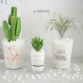 仿真植物多肉北歐綠植ins室內擺設仿真花套裝小盆栽擺件塑料假花·享家
