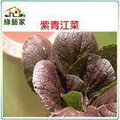 【綠藝家】A62.紫色青江菜種子(韓國進...