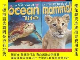 二手書博民逛書店My罕見FirstBook of Ocean Life+My FirstBook of Mammals(2冊合售,