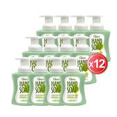 綠的GREEN 植物系潔手慕斯_檸檬伯爵(300mlx12)箱購★加送抗菌皂(100gx3入)x2