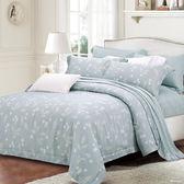 【金‧安德森】天絲床組《馬拉加》兩用被床包四件組 (標準雙人)