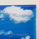韓國彩繪自黏窗貼_HY-HP3811A
