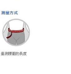 【宏海護具專家】 護具 護腰 LP 919 腰部護具 (1個裝) 【另有售LP 937新款護腰】