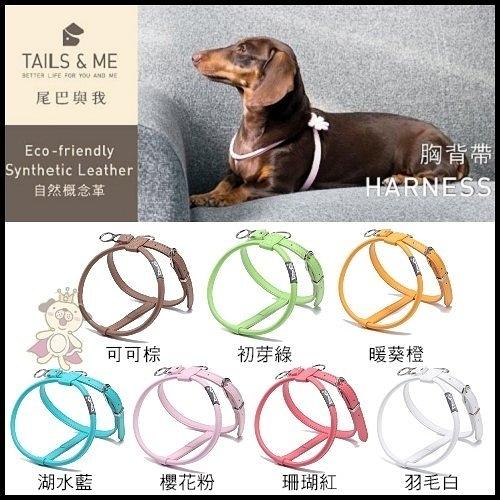 『寵喵樂旗艦店』台灣製TAILS&ME 尾巴與我《自然概念革-純粹系列胸背帶》M號賣場