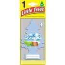 LittleTrees 小樹香片 - 煥然衣新