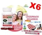 六瓶八折團購價 赫而司-美國進口新元氣錠 BIO-ENERGY綜合素食維他命(全素食)