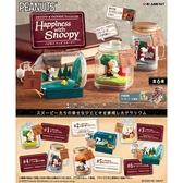 盒裝6款【日本正版】史努比 日常盆景品 幸福篇 盒玩 盆景品 瓶中造景 Snoopy Re-Ment 250854