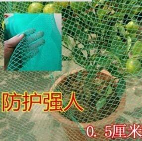 戶外保護綠植菜園防鳥神器