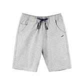 『小鱷魚童裝』休閒棉褲(08號~20號)555616