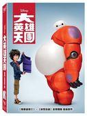 迪士尼動畫系列限期特賣 大英雄天團 DVD (音樂影片購)