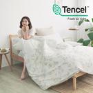 [小日常寢居]#HT031#絲柔親膚奧地利TENCEL天絲3.5尺單人床包被套三件組(含枕套)台灣製/萊賽爾Lyocell
